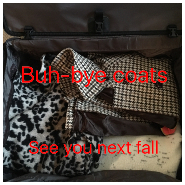coats are packed in suitcase