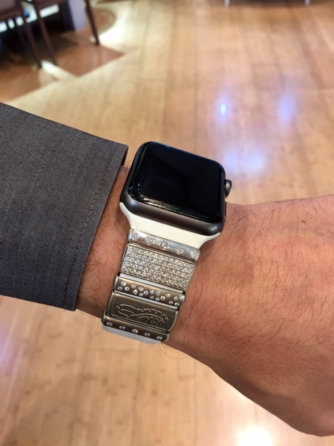 Add ons to an Apple watch